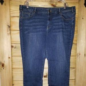 Lane Bryant Skinny Jeans 24w